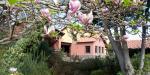 Quinta Do Furao Hotel Picture 0
