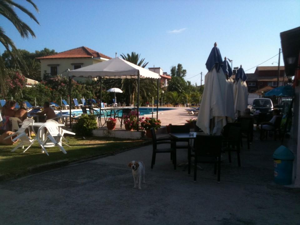 Holidays at Lord Complex in St George South, Corfu