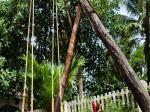 Ocean Palms Resort Picture 7