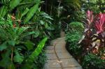 Villa Theresa Beach Resort Picture 0
