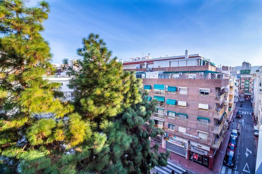 Holidays at Montesol Hotel in Benidorm, Costa Blanca