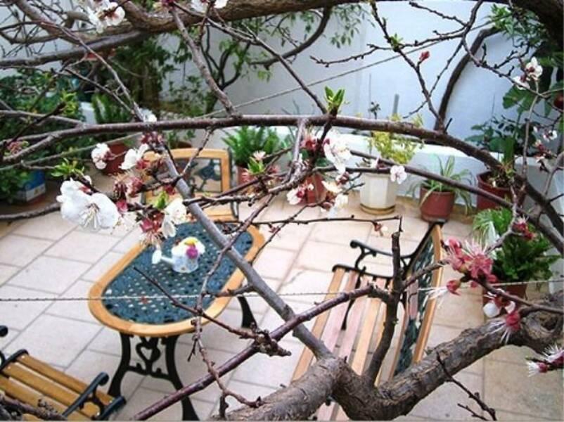 Holidays at Doxa Hotel in Aghios Nikolaos, Crete