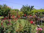 Holidays at Sorta Apartments in Agii Apostoli, Chania