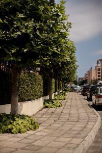 Holidays at Sunny Holiday Aparthotel in Sunny Beach, Bulgaria