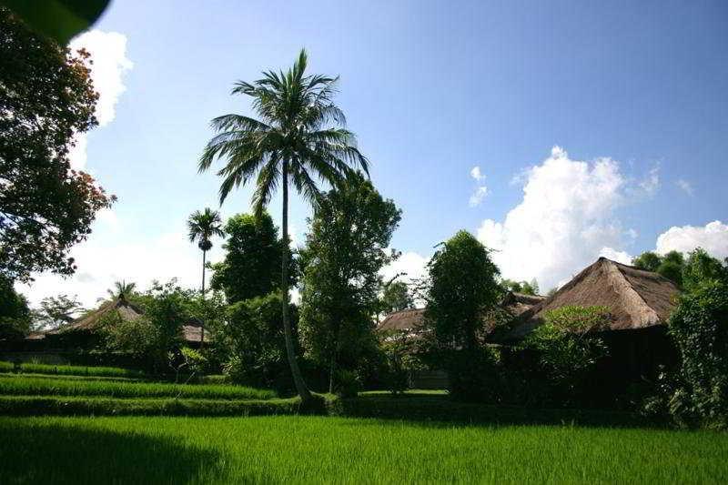 Holidays at Ananda Cottages in Ubud, Bali