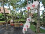 Holidays at Arma Resort Hotel in Ubud, Bali