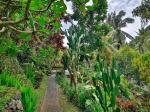 Bali Spirit Hotel Picture 9