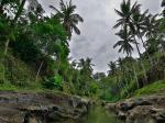 Bali Spirit Hotel Picture 3