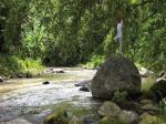 Four Season Resort Bali At Sayan Hotel Picture 0