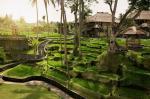 Kamandalu Resort & Spa Hotel Picture 2