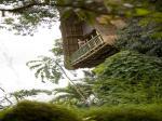 Kupu Kupu Barong Villas & Tree Spa Hotel Picture 9