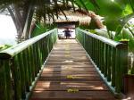Kupu Kupu Barong Villas & Tree Spa Hotel Picture 0