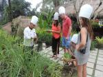 Nandini Bali Jungle Resort And Spa Ubud Hotel Picture 2