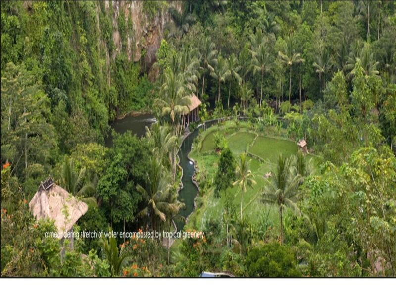 Holidays at Royal Pitamaha Hotel in Kedewatan, Ubud