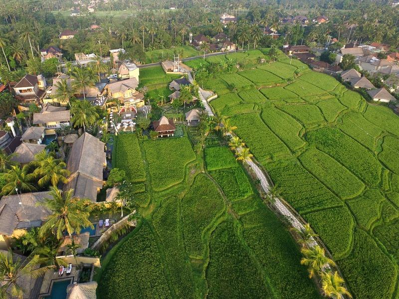 Holidays at Waka Di Ume Hotel in Ubud, Bali