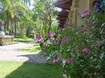 Aditya Beach Resort Hotel Picture 0