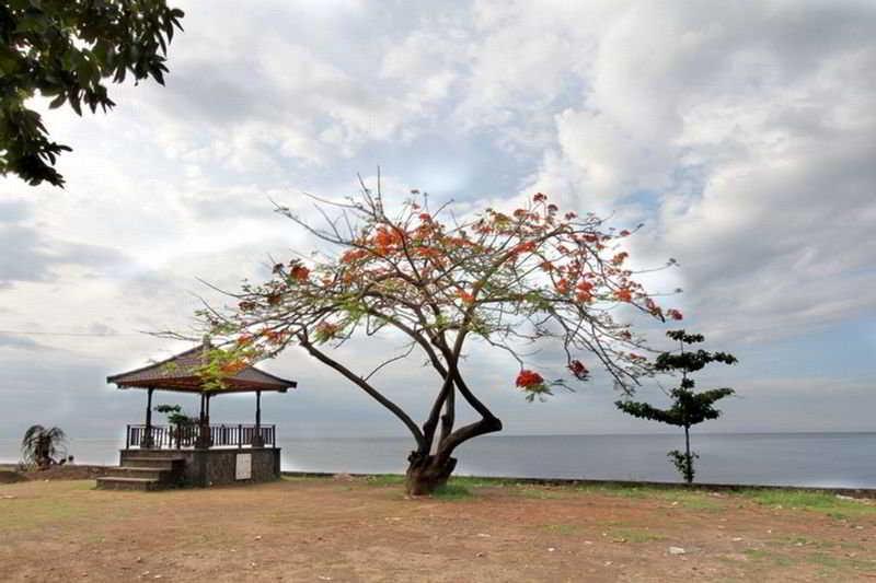 Holidays at Gino Feruci Villa in Lovina, Bali