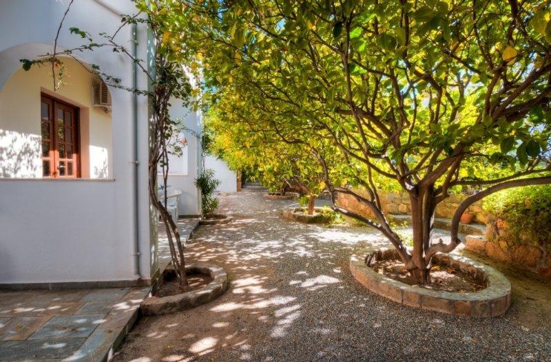 Holidays at Lemon Tree Studios in Pefkos, Rhodes
