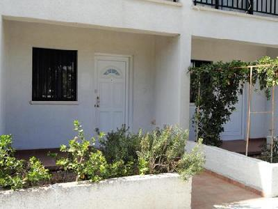 Holidays at Lefki Tree Tourist Apartments in Paphos, Cyprus