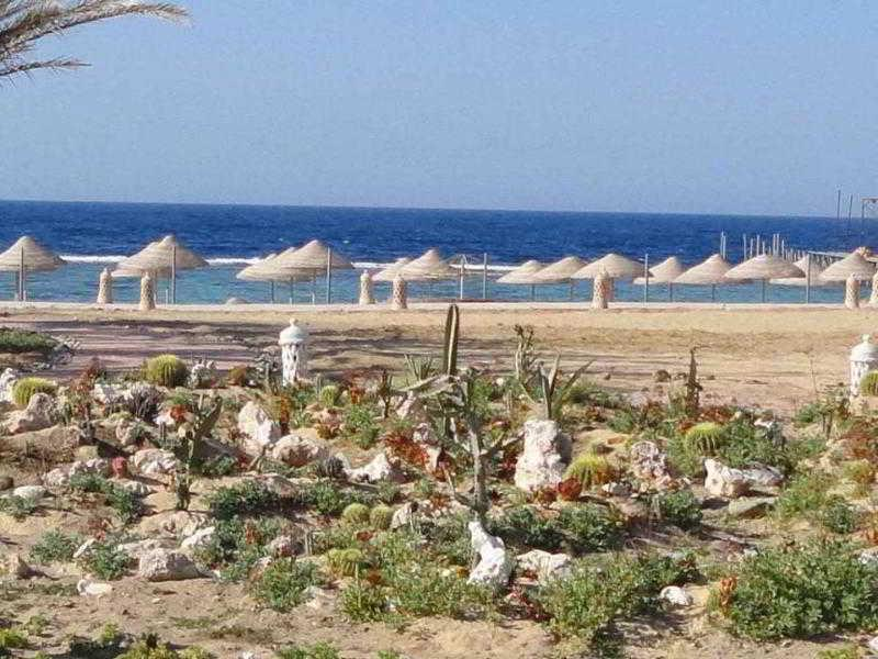 Holidays at Onatti Beach Resort in Marsa Alam, Egypt