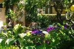 Villa Belvedere Hotel Picture 11