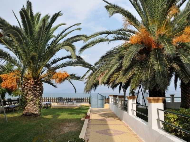 Holidays at Evgenios Studios in Kavos, Corfu
