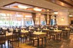Dizalya Palm Garden Hotel Picture 7