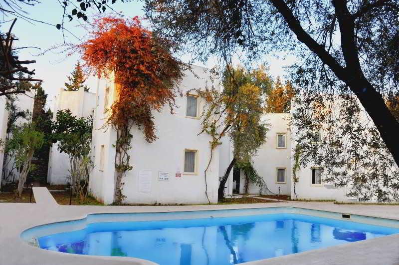 Holidays at Princess Diltua Hotel in Bodrum, Bodrum Region