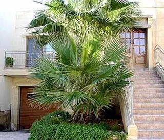 Holidays at Villa Dar Ta Jeffrey in Gozo, Malta
