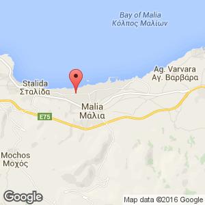 Sunshine Apartments Malia Malia Crete Greece Book Sunshine
