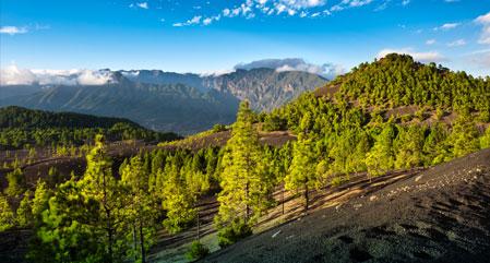 Canary Islands - La Palma
